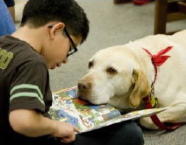 "Bideawee ""Reading to Dogs"" Program"